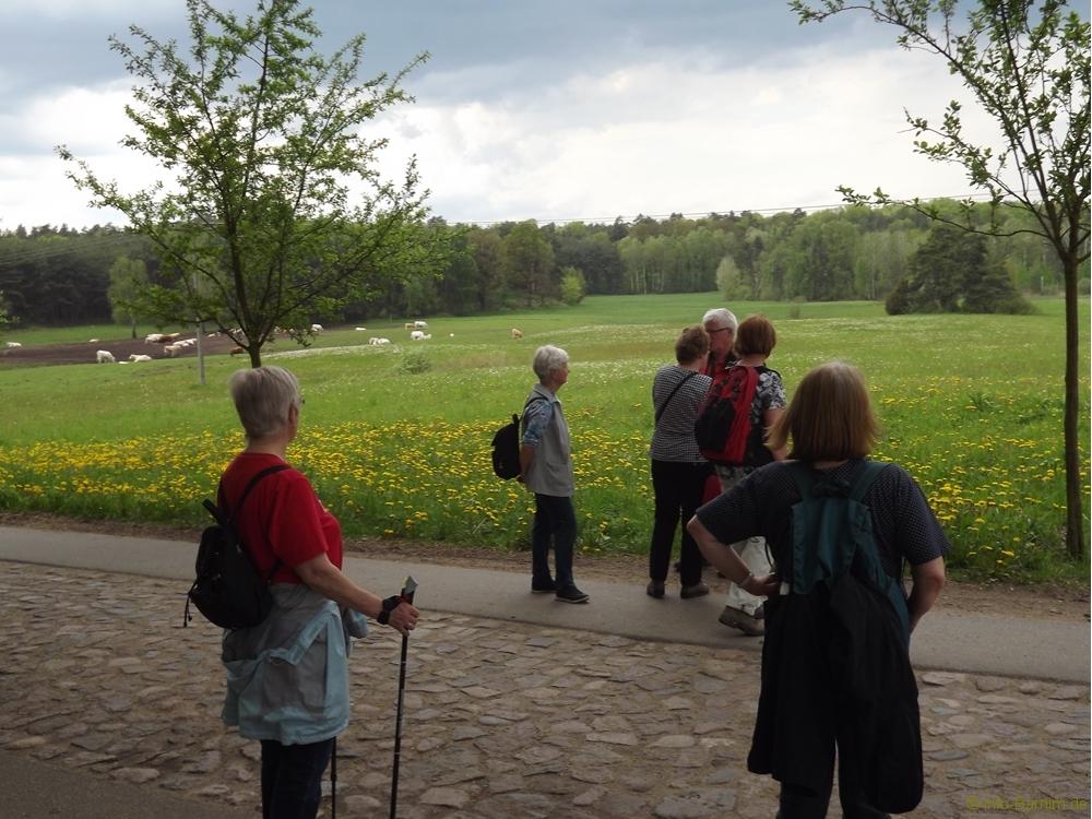 201705-buchenwald-chorin-05-naturfreunde