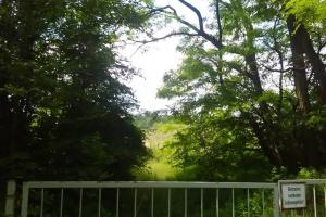 20170605-badfreienwalde-ahrendskehle (12)