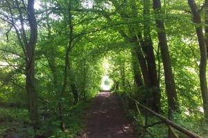 20170605-badfreienwalde-ahrendskehle (15)