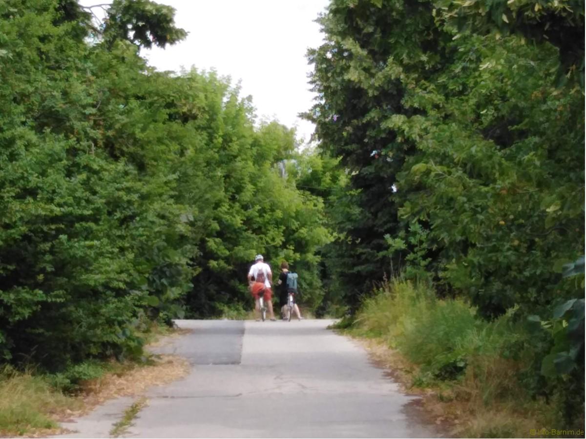 Radtour Ladeburg: Radfahrer Schmetzdorfer Straße