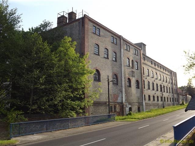 spechthausen_2012_7