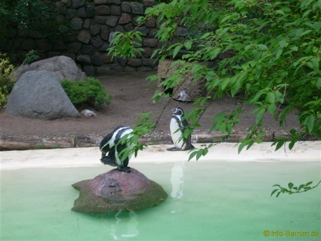 zoo_eberswalde_2008_01