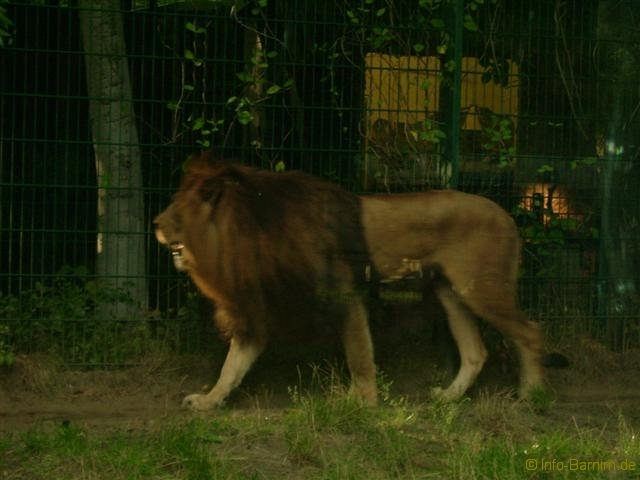 zoo_eberswalde_2008_05