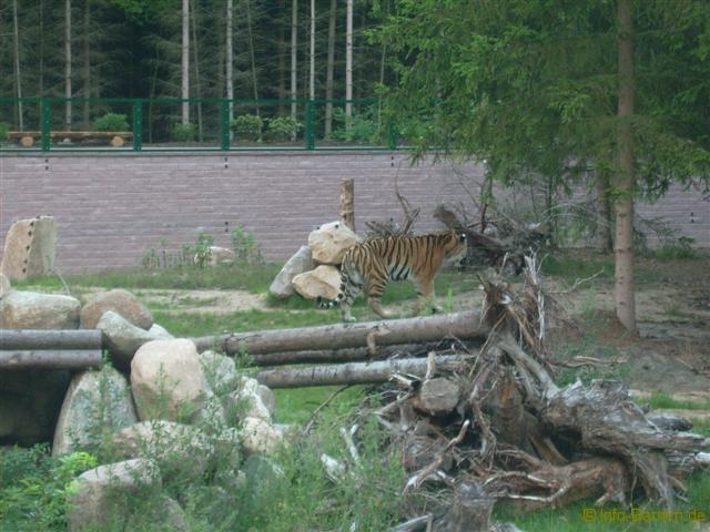 zoo_eberswalde_2008_15
